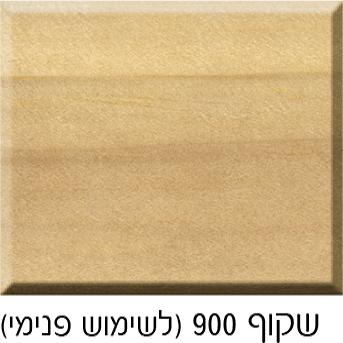 שקוף 900